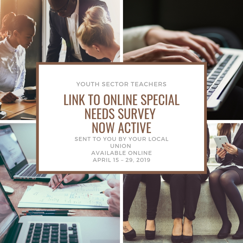 Link to Online Special Needs Survey: Youth Sector Teachers